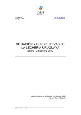 Informe de Coyuntura 2010
