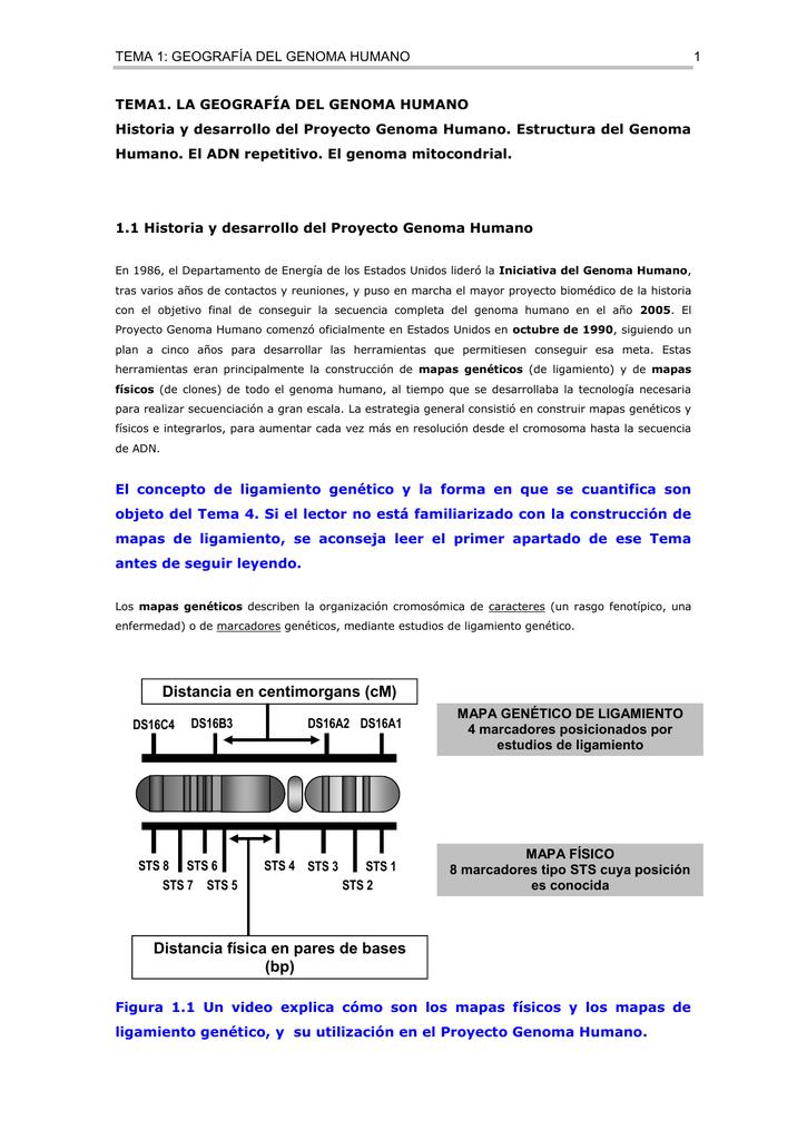 Tema 1 Geografía Del Genoma Humano 1