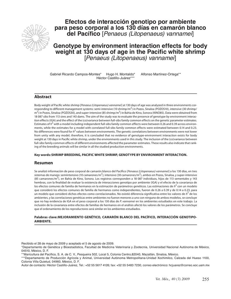 rvm40304 pdf
