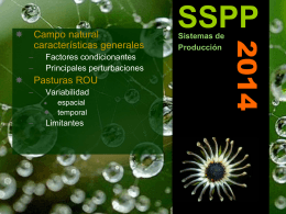 SSPP 2014  Campo natural