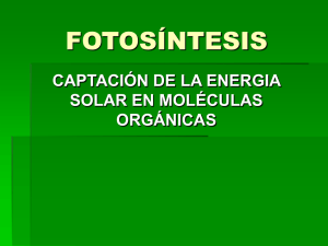 FOTOS_NTESIS.ppt