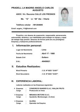 curriculum vitae PRADELL LA MADRID ANGELO CARLOS