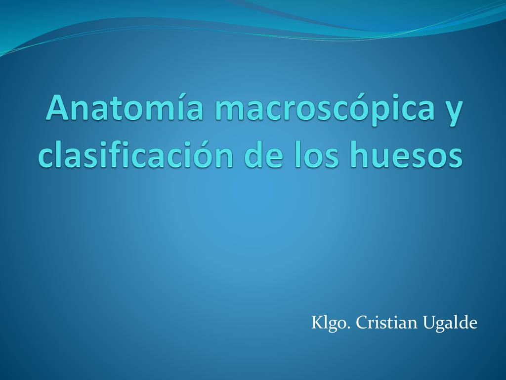 anatomia macroscopica y clasificacion de los huesos