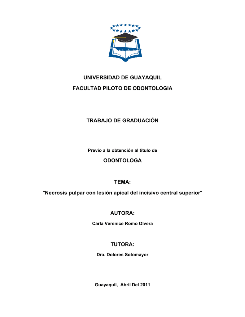 248 ROMO pdf
