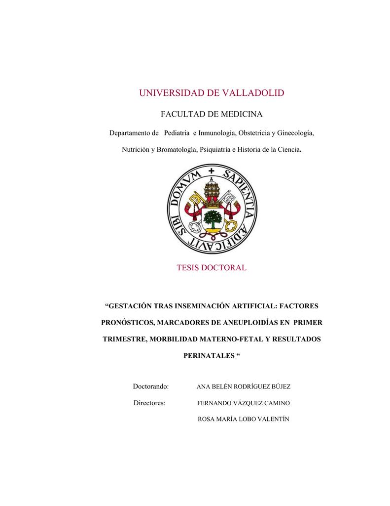 TESIS437-140203.pdf