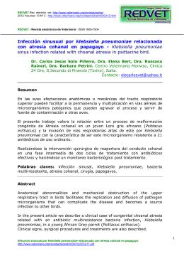 Infección sinusual por klebsiella pneumoniae relacionada con atresia cohanal en papagayo