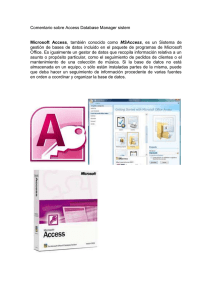 Comentario sobre Access Database Manager sistem