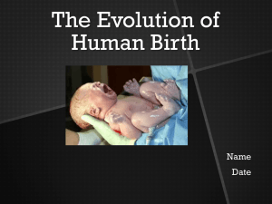 The Evolution of Human Birth
