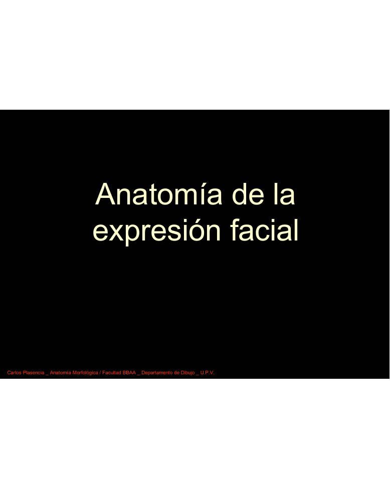 Anatomía de la expresión facial