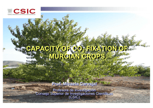 CAPACITY OF CO FIXATION OF MURCIAN CROPS