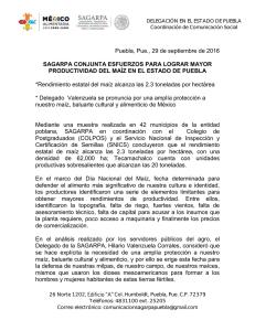 Guantes Trabajo Malla Acero Inoxidable Proteger Cortes Usada Como Herramienta Jardiner/ía y Carnicer/ía Corte Prueba Pu/ñalada Resistente