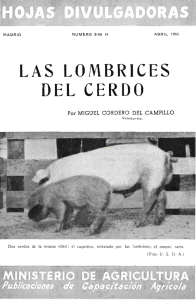 LAS LOMBRICES DELCERDO