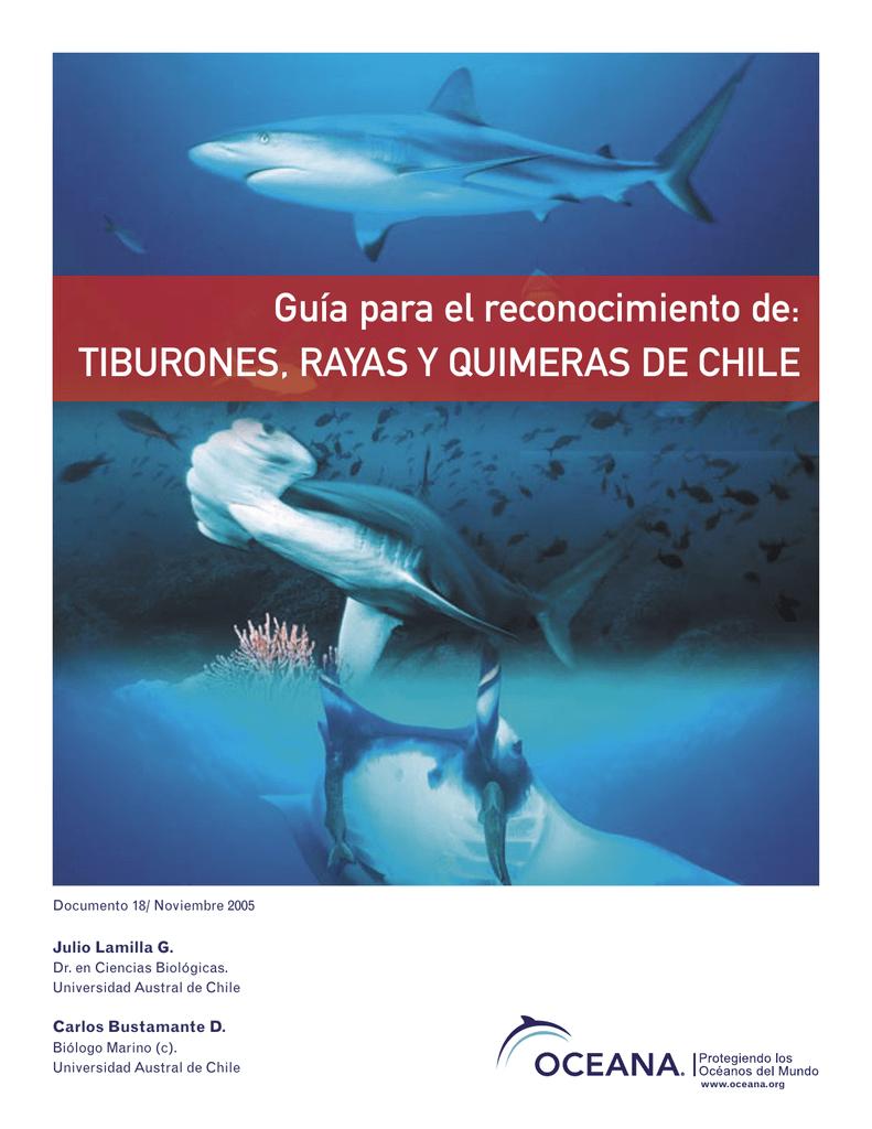 tiburones, rayas y quimeras de Chile