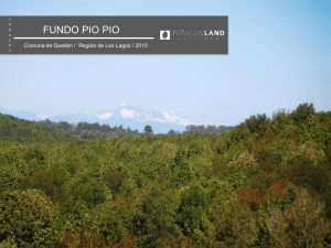 fundo pio pio - Patagon Land Investment