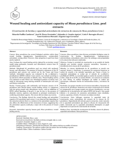 Wound healing and antioxidant capacity of Musa paradisiaca Linn