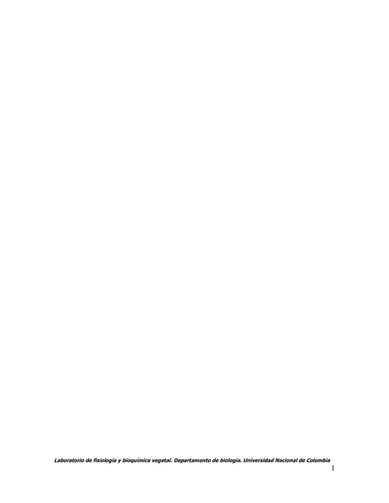 1x Toalla de ba/ño /ÖKO-Tex Standard 500 g//m/² 100/% algod/ón de Rizo Antracita