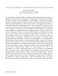 ESSAYS ON HETEROGENEITY, INVESTMENT