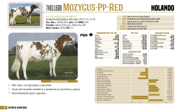 7HO11608 Mozygus-Pp-Red