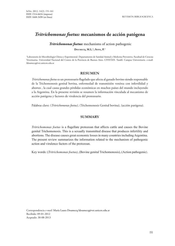 Atractivo Reanudar Words De Acción Ingeniería Elaboración - Ejemplos ...
