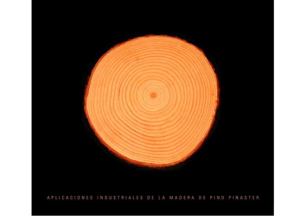 300mm de madera balsa Tacos artesanía Modelos 5mm 6mm 8mm 10mm Artes 25mm 30cm