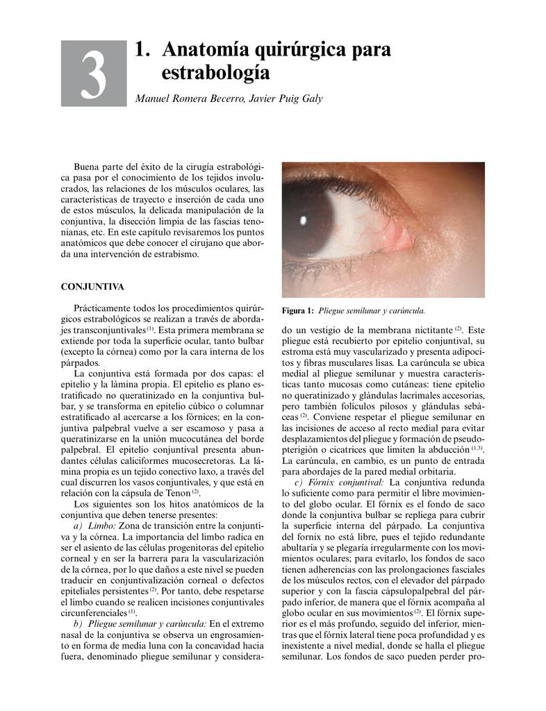 1. Anatomía quirúrgica para estrabología