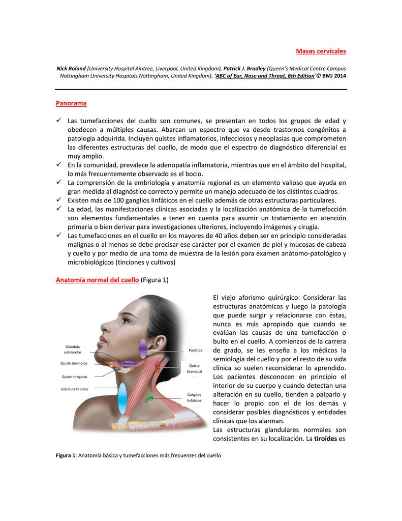 Masas cervicales Panorama Las tumefacciones del cuello son