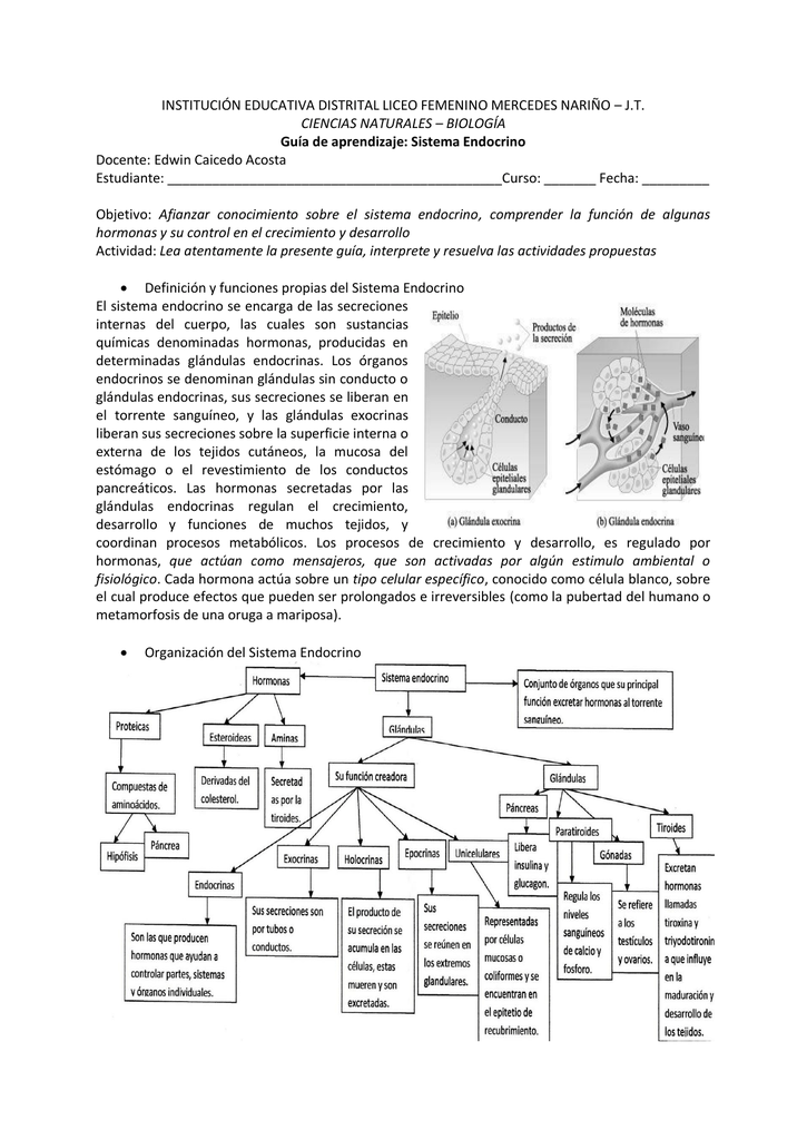 JT CIENCIAS NATURALES – BIOLOGÍA Guía de aprendizaje