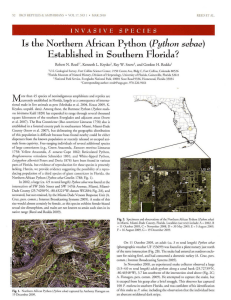 Is the Norlhern African Python (Python sebae) Established in
