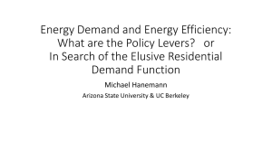 Energy Demand and Energy Efficiency: What are the Policy Levers?