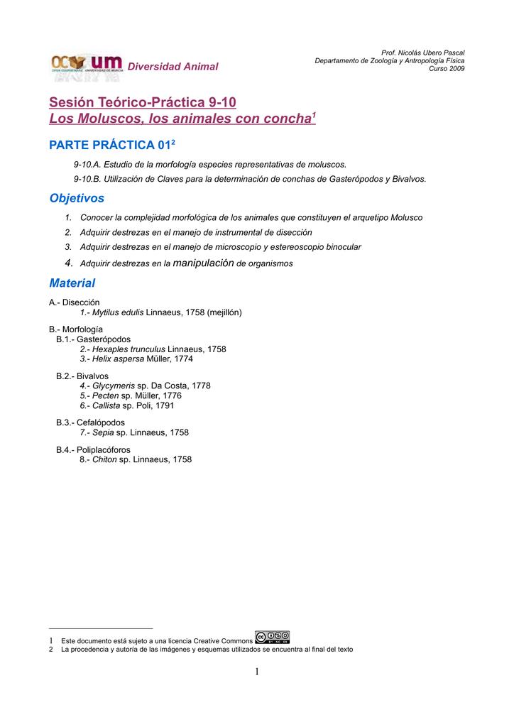 Sesión Teórico-Práctica 9-10 Los Moluscos, los animales