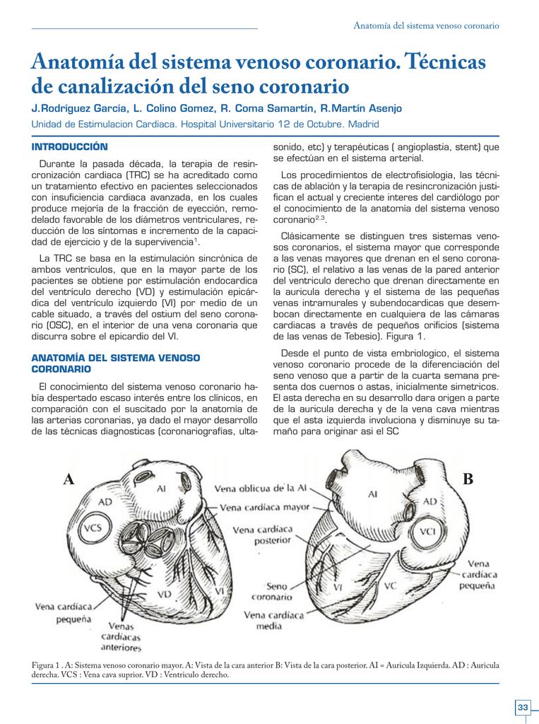 Cuadernos de Estimulación Cardiaca nº12