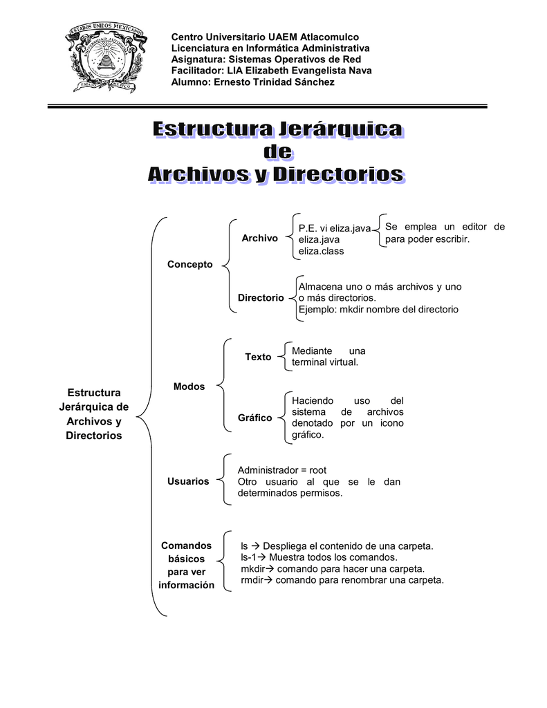 Estructura Jerárquica De Archivos Y Directorios