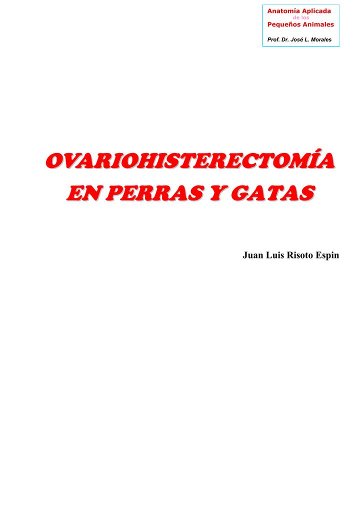 OVARIOHISTERECTOMÍA EN PERRAS Y GATAS
