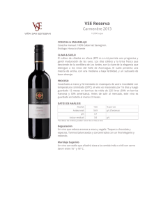 Viña San Esteban wines reflect the intensity and purity of the