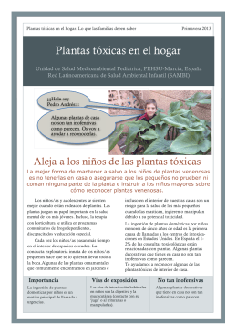 Plantas tóxicas en el hogar - Paediatric Environmental Health