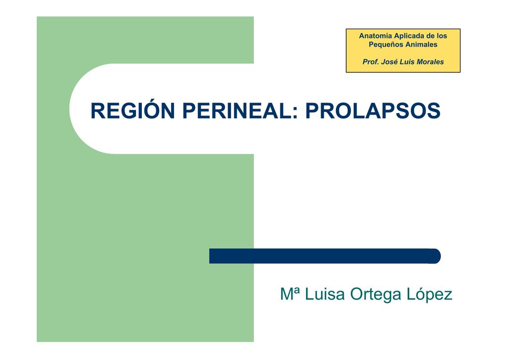 REGIÓN PERINEAL: PROLAPSOS