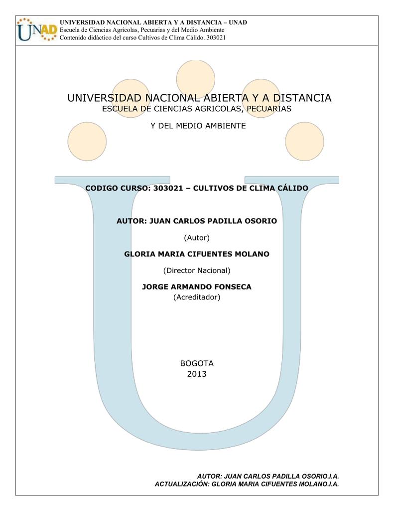 Base Blanca 100/% algod/ón Pa/ño de Cocina de Nido de Abeja 50 x 70 cm MIE DI CASA Fabricado en Italia