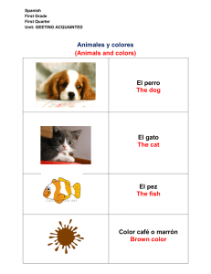 Animales y colores (Animals and colors) El perro The dog El gato