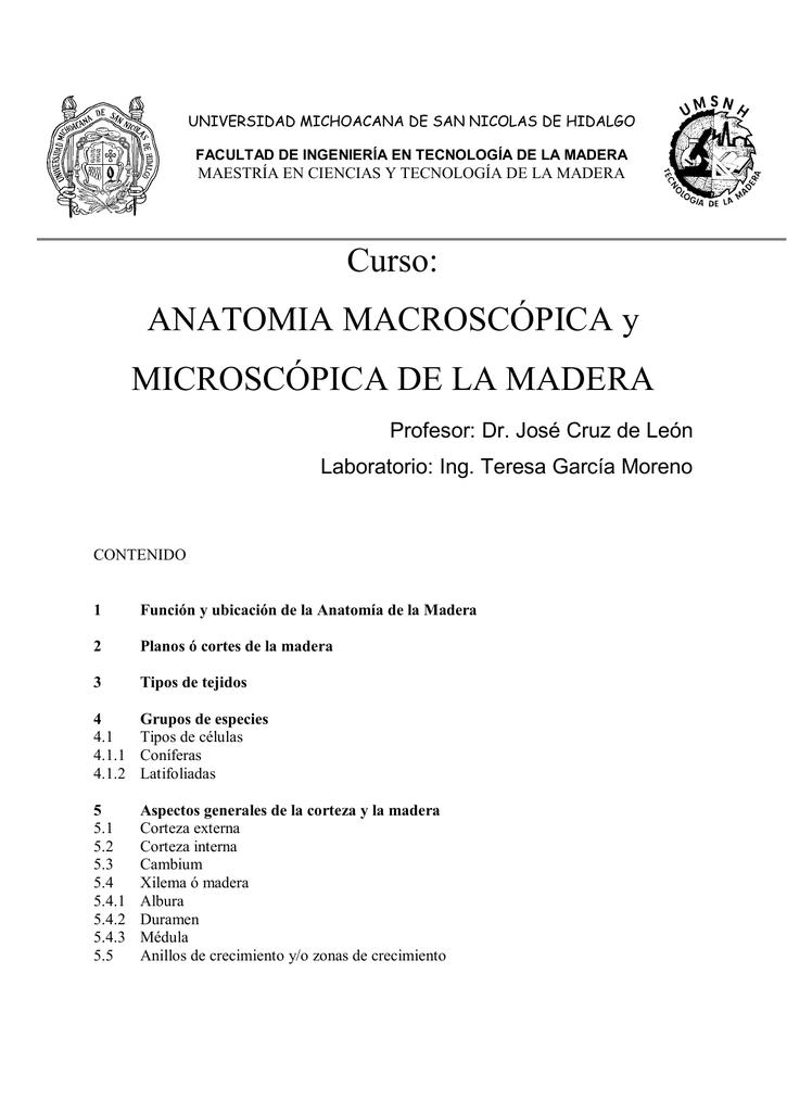 Increíble Maestría En Ciencias De La Anatomía Foto - Imágenes de ...