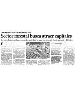 Sector forestal busca atraer capitales