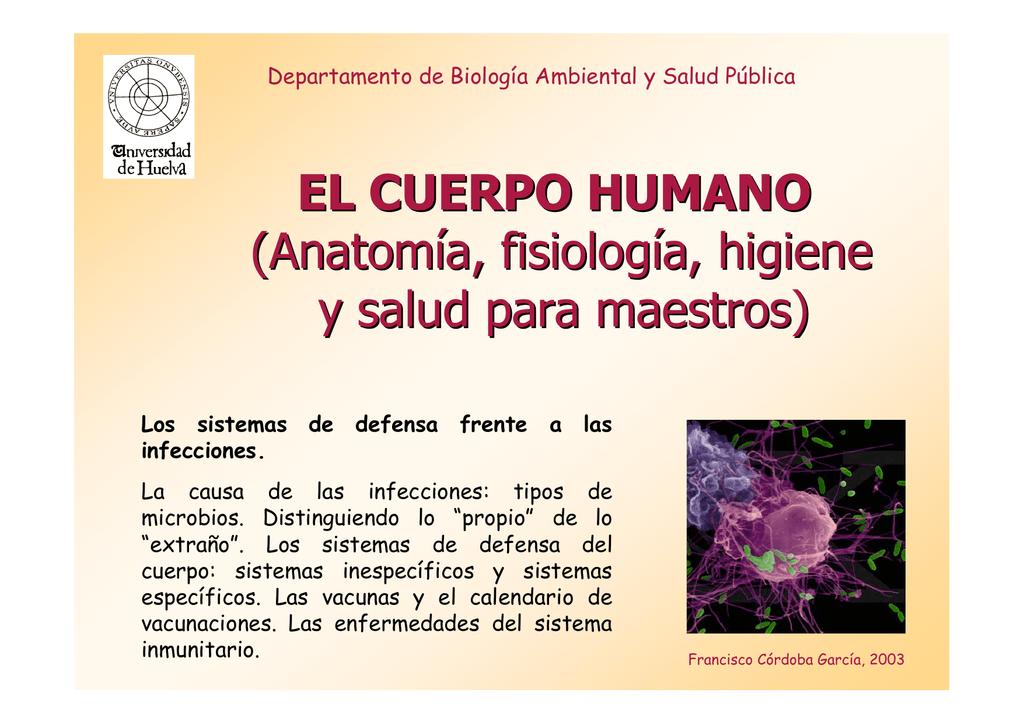 EL CUERPO HUMANO (Anatomía, fisiología, higiene y salud para