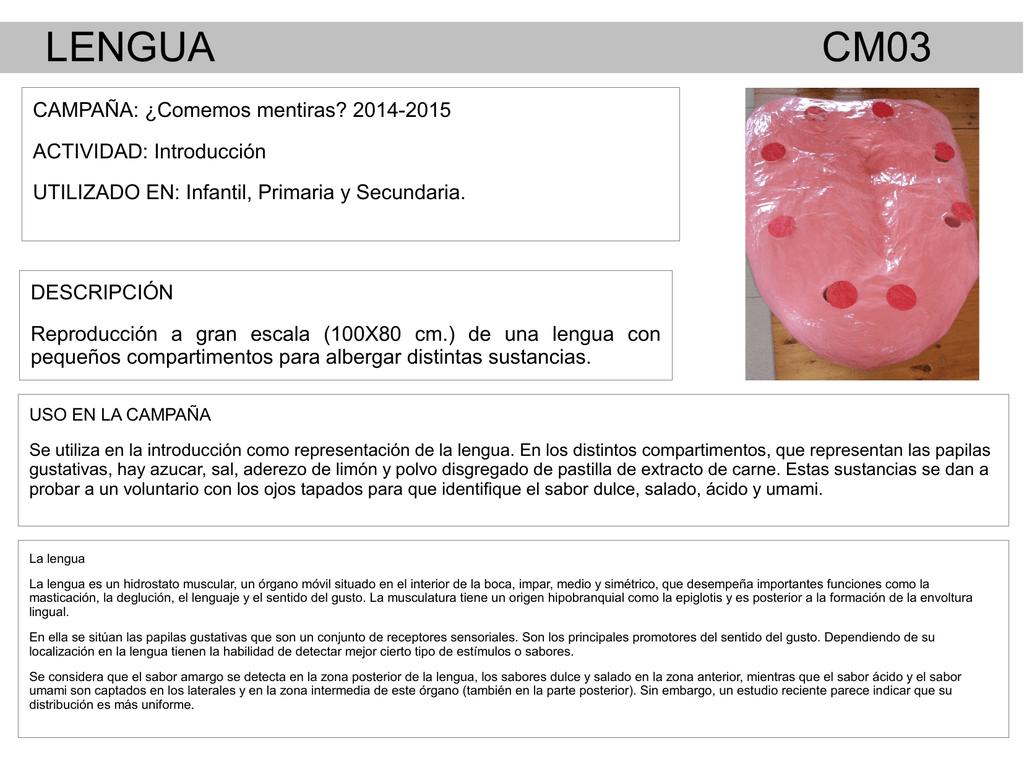 LENGUA CM03