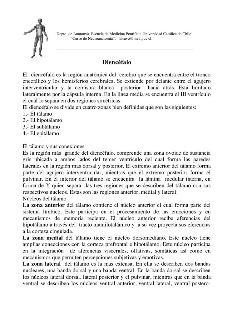 diencefalo.1 - Escuela de Medicina UC