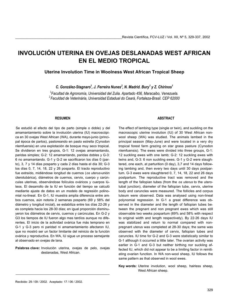 involución uterina en ovejas deslanadas west african
