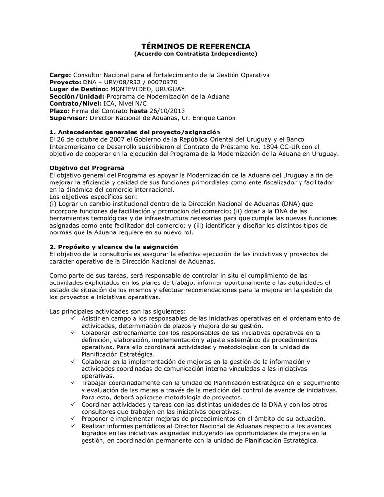 términos de referencia - Dirección Nacional de Aduanas