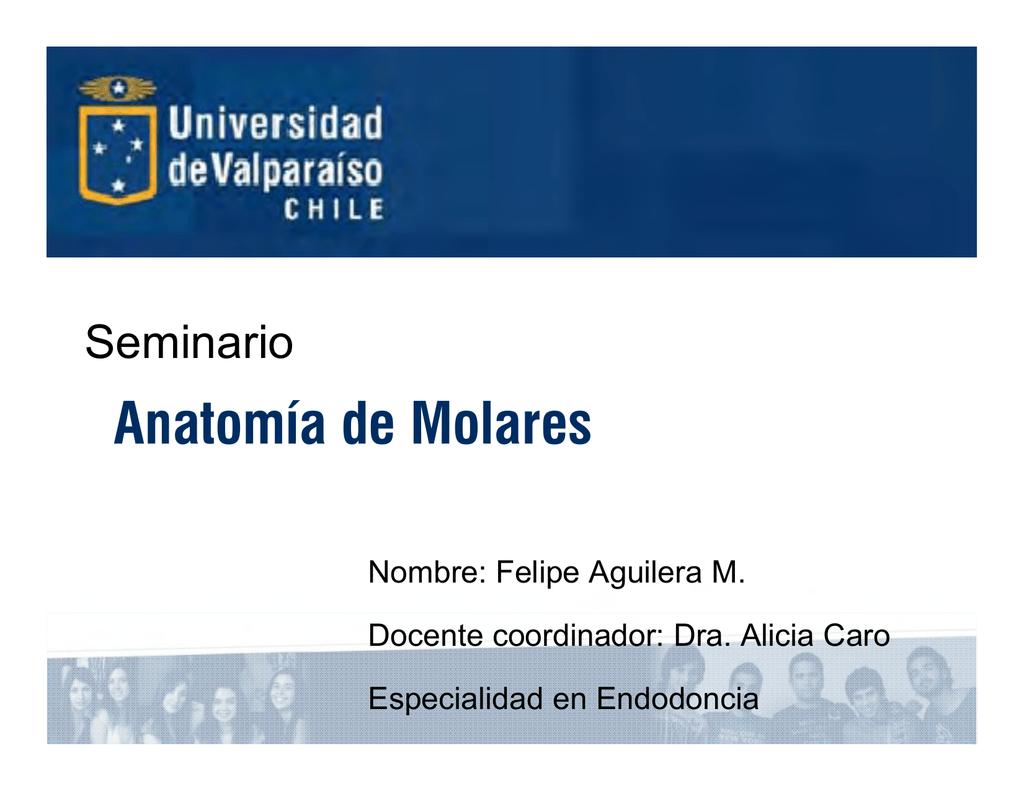 Anatomia de Molares dos - Postgrado de Odontologia