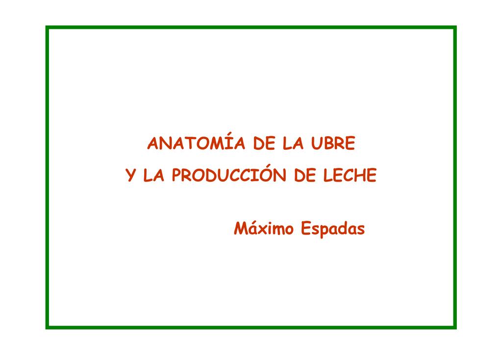 ANATOMÍA DE LA UBRE Y LA PRODUCCIÓN DE LECHE Máximo
