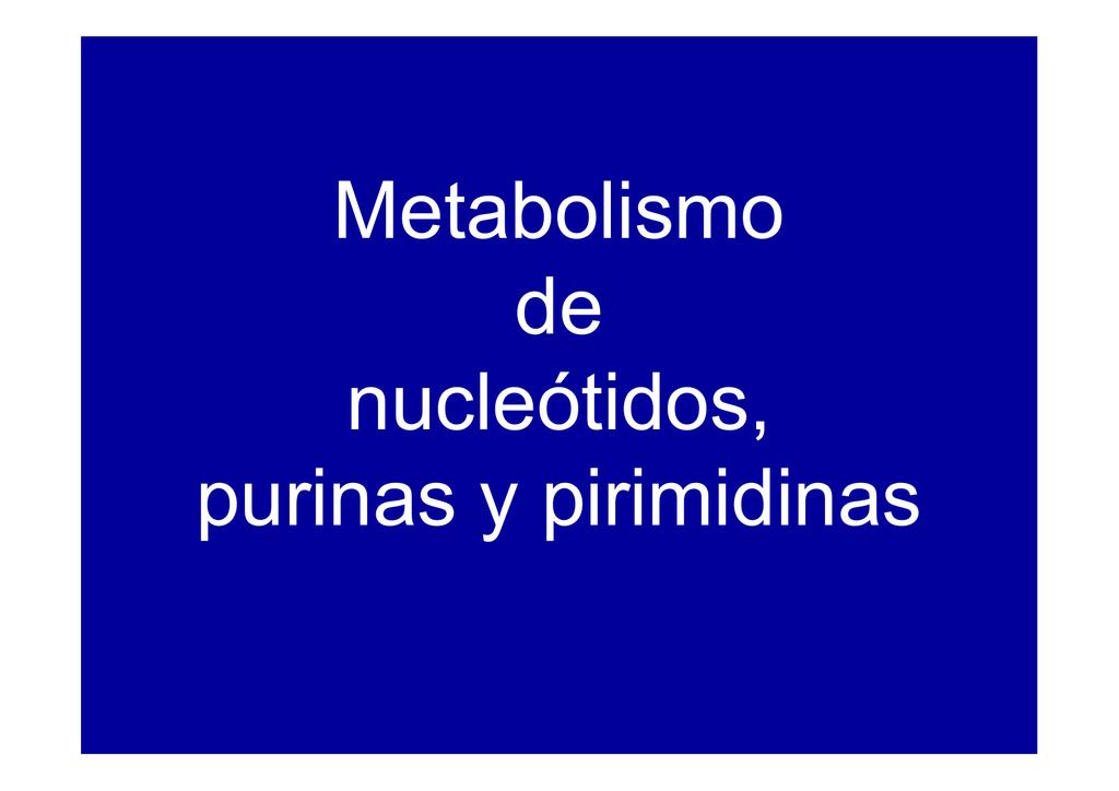 calculadora de metabolismo basal opciones