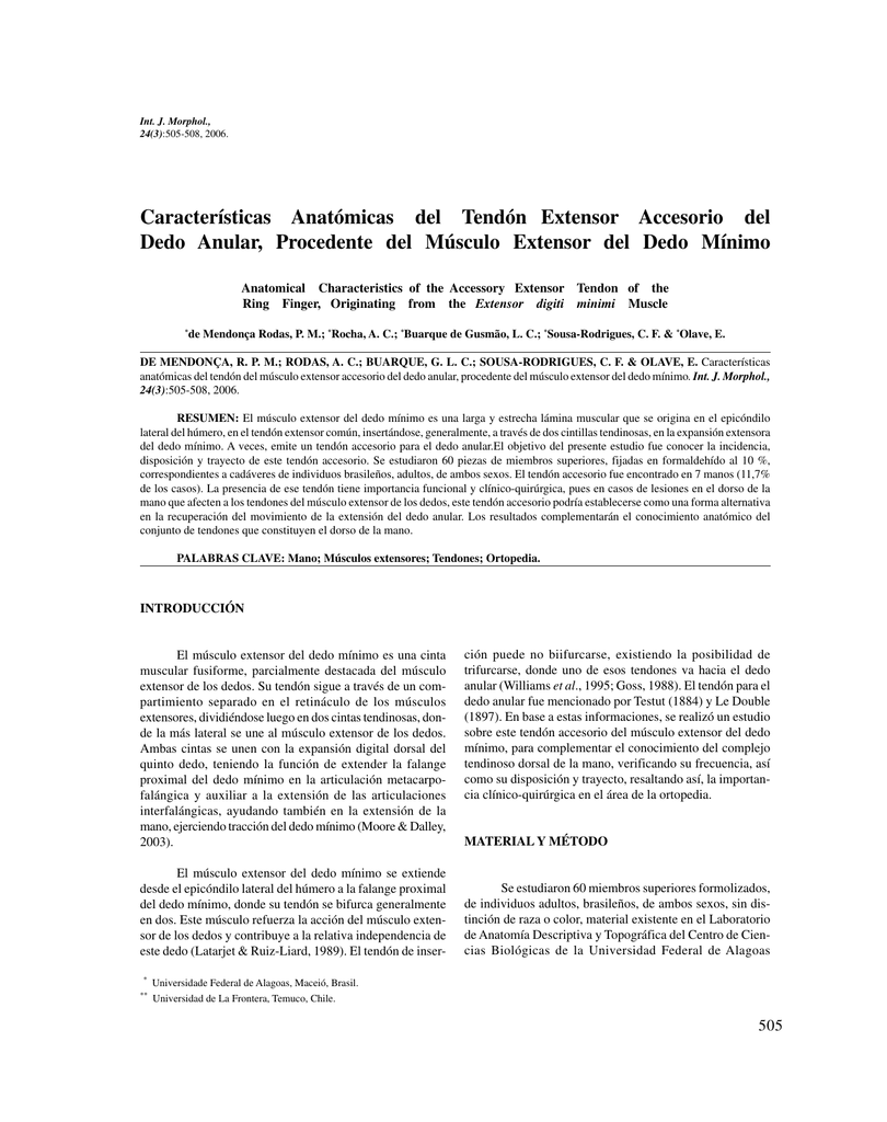 Características Anatómicas del Tendón Extensor Accesorio del