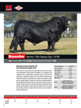 Maywather Rancho 1790 Cassius Clay l 10790